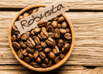 Hạt cafe Robusta